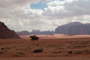 Trek Wadi Rum